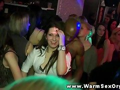 Hot authoritative babes elbow party riding